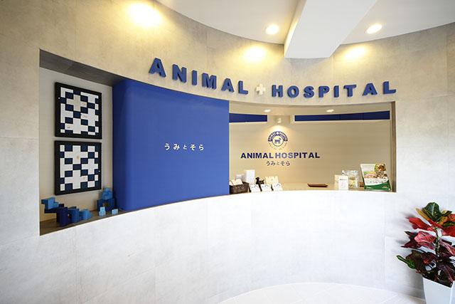 動物病院うみとそらphoto
