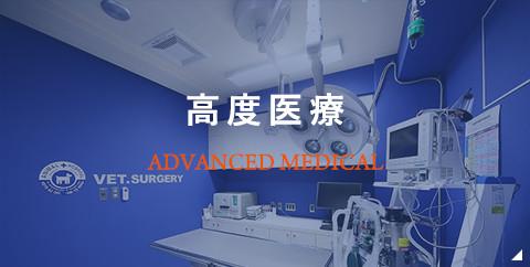 高度医療の動物病院